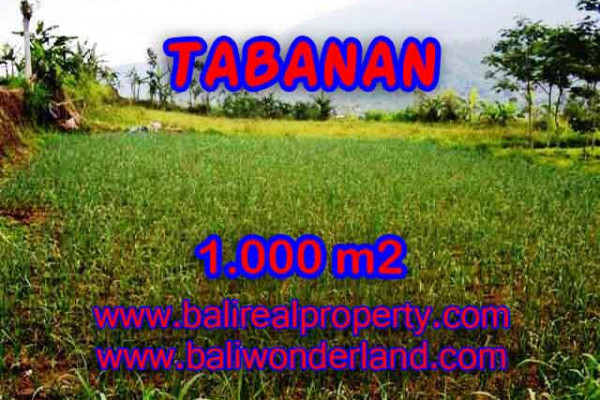 Land for sale in Bali, Spectacular view in Tabanan Bali – 1.000 m2 @ $ 145