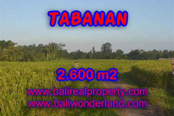Fantastic Property in Bali, LAND FOR SALE IN TABANAN Bali – 2.600 m2 @ $ 42