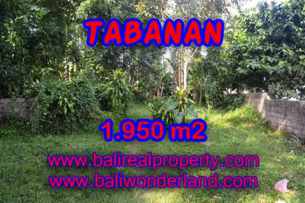 Land for sale in Bali, Fantastic view in Tabanan Bali – 1.950 m2 @ $ 165