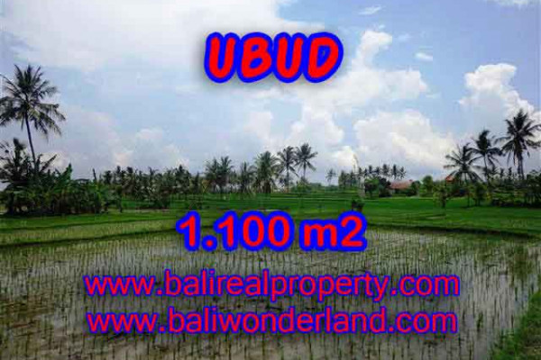 Land for sale in Ubud Center, a Promissing Property investment