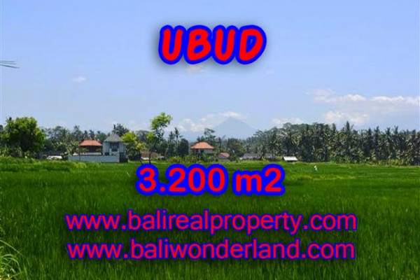 Exceptional Property in Bali, Land in Ubud Bali for sale – 3.200 m2 @ $ 325