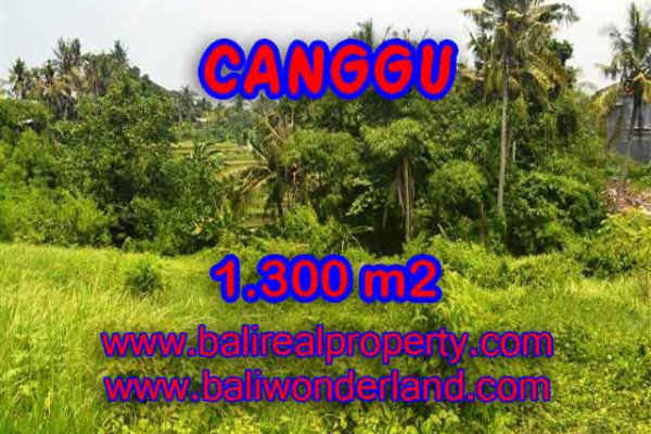 Land for sale in Bali, exotic view in Canggu Batu bolong Bali – TJCG136