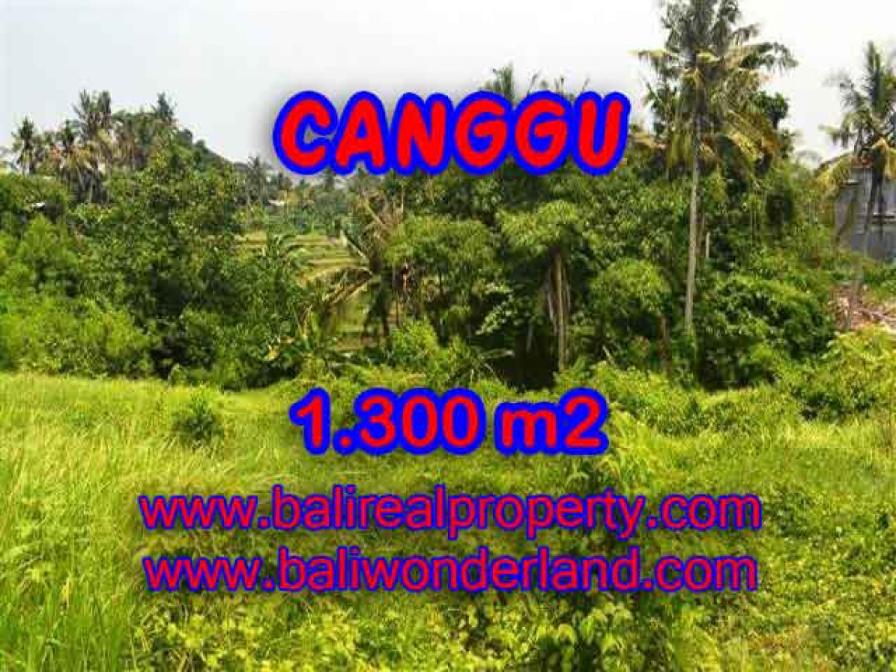 Extraordinary Property for sale in Bali, land for sale in Canggu Bali  – 1.300 m2 @ $ 310