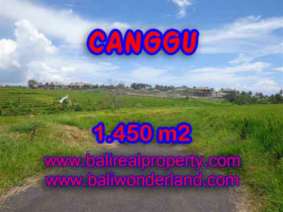 Bali Property for sale, Nice View land for sale in Canggu Bali  – 1.450 m2 @ $ 600
