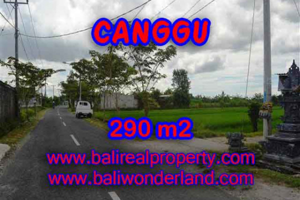 Astounding Property in Bali, Land in Canggu Bali for sale – 290 m2 @ $ 395