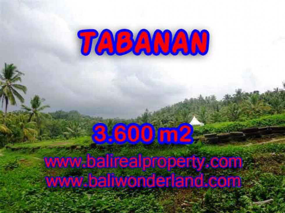 Extraordinary Property for sale in Bali, land for sale in Tabanan Bali – 3.600 m2 @ $ 35
