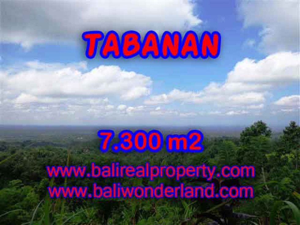 Attractive Property for sale in Bali, Tabanan land for sale – 7.300 m2 @ $ 55