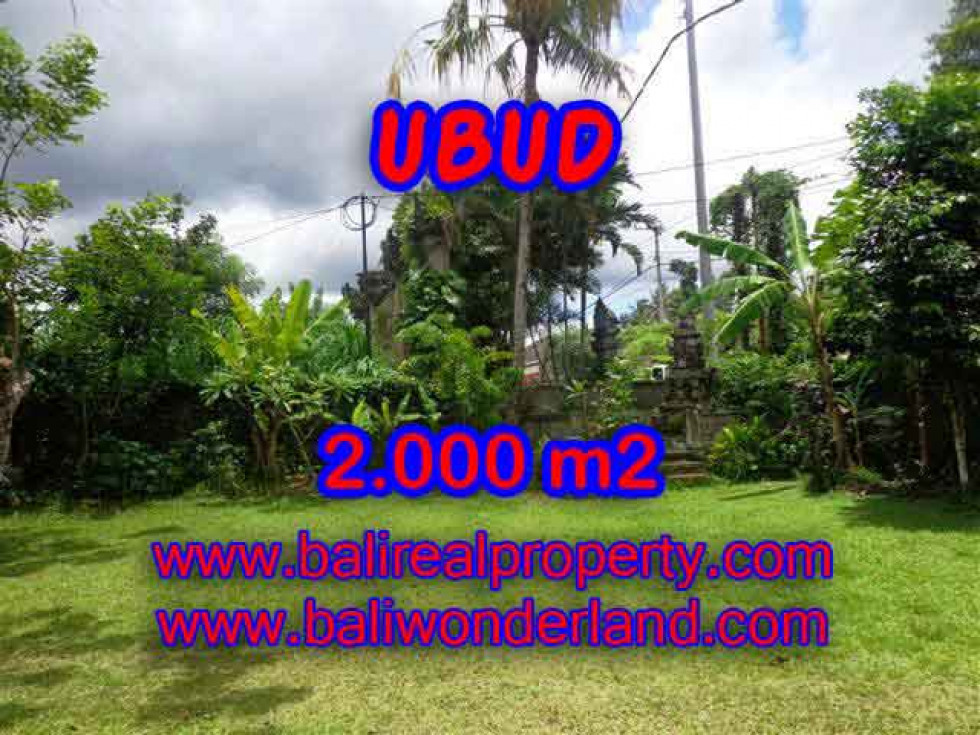 Land in Bali for sale, Stunning Property in Ubud Bali – 2.000 m2 @ $ 435