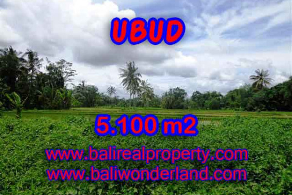 Land for sale in Bali, Exceptional view in Ubud Bali – 5.100 m2 @ $ 155