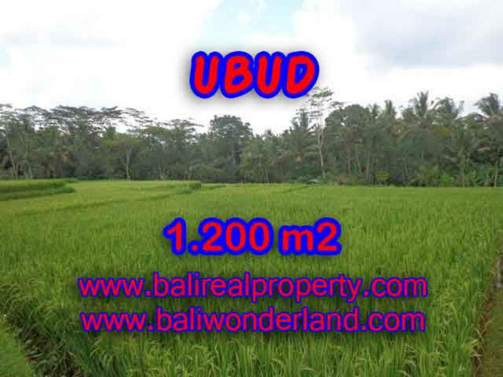 Splendid Property for sale in Bali, LAND FOR SALE IN UBUD Bali  – 1.200 m2 @ $ 135