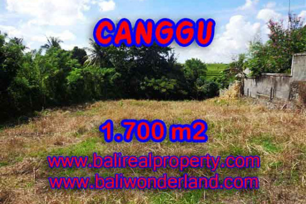 Land in Bali for sale, Outstanding view in Canggu Pererenan Bali – TJCG143