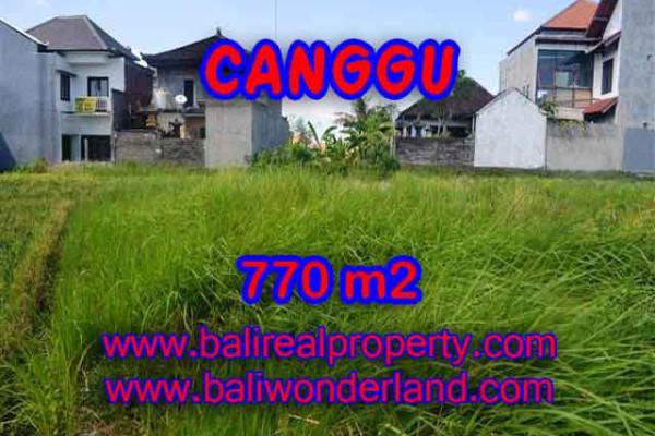 Amazing Land in Bali for sale in Kerobokan Bali – TJCG148