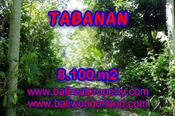 Excellent Property for sale in Bali, land for sale in Tabanan Bali  – 8.100 m2 @ $ 27
