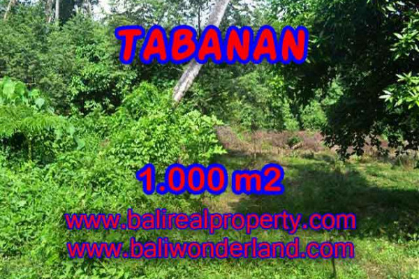 Property for sale in Tabanan Bali, Superb land for sale in Tabanan kediri  – 1.000 m2 @ $ 425