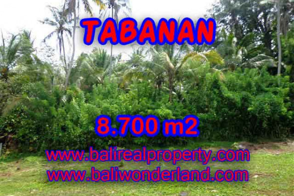 Terrific Property for sale in Bali, LAND FOR SALE IN TABANAN Bali  – 8.700 m2 @ $ 55
