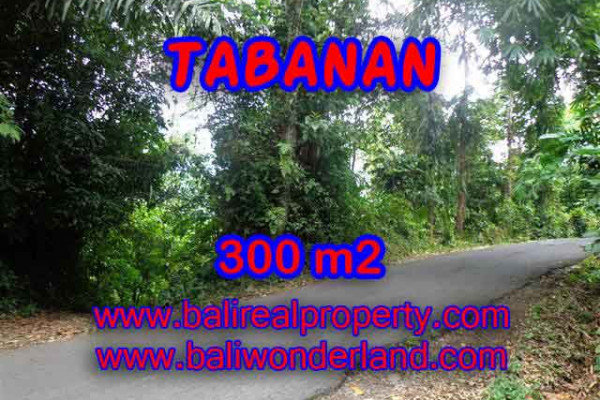 Land for sale in Tabanan Selemadeg, a Promissing Property investment