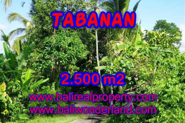 Outstanding Property for sale in Bali, land for sale in Tabanan Bali – TJTB122