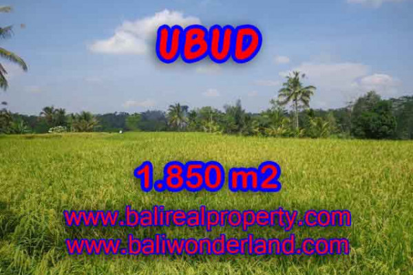 Land for sale in Ubud, Magnificent view in Ubud Tegalalang Bali – TJUB410