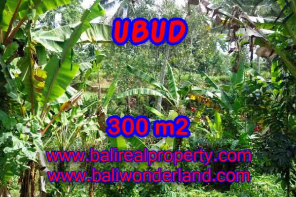 Exceptional Property in Bali, Land in Ubud Bali for sale – 300 m2 @ $ 395