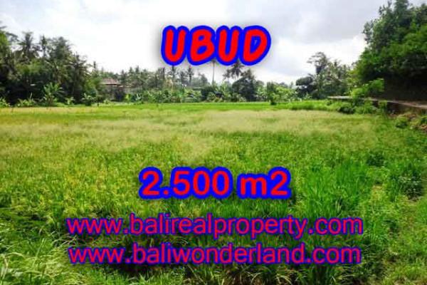 Exotic Property in Bali, Land sale in Ubud Bali – 2.500 m2 @ $ 285
