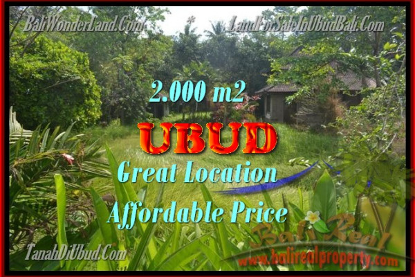 Land for sale in Bali, Outstanding property in Ubud Bali – 2.000 m2 @ $ 485