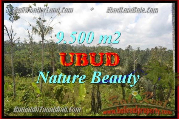 Splendid Property for sale in Bali, LAND FOR SALE IN UBUD Bali  – 9.500 m2 @ $ 125