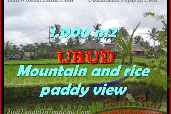 Land for sale in Bali, Fantastic view in Ubud Tegalalang – TJUB424