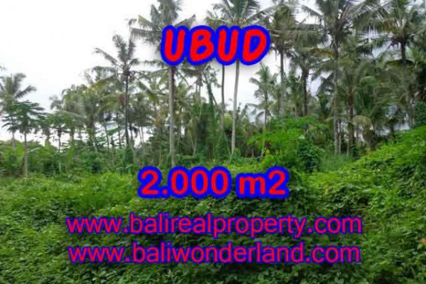 Land in Bali for sale, Stunning Property in Ubud Bali – 2.000 m2 @ $ 285