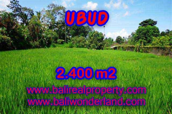 Land for sale in Bali, Fantastic view in Ubud Bali – 2.400 m2 @ $ 145
