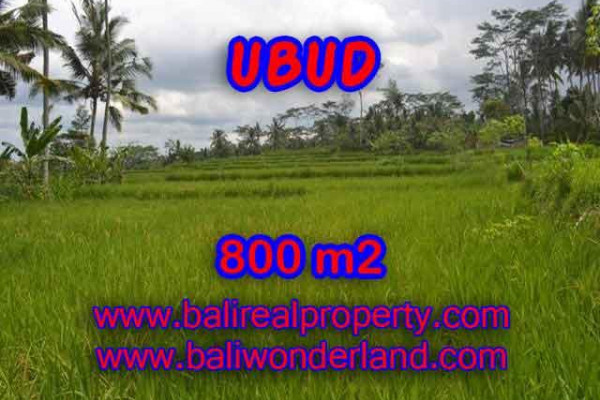 Land for sale in Bali, Outstanding view in Ubud Bali – 800 m2 @ $ 120