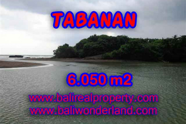 Exotic Property in Bali, Land sale in Tabanan Bali – 6.050 m2 @ $ 85