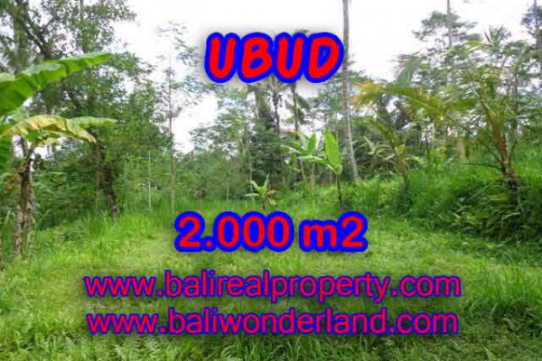 Land in Ubud Bali for sale, Outstanding view in Ubud Tegalalang – TJUB406