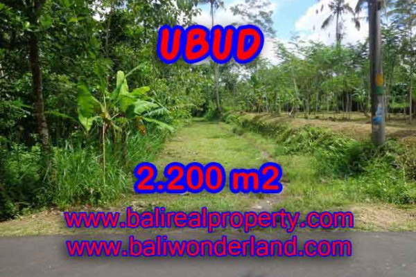 Bali Property for sale, Nice View land for sale in Ubud Bali  – 2.200 m2 @ $ 70