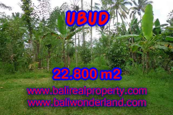 Beautiful Property for sale in Bali, land for sale in Ubud Bali  – 22.800 m2 @ $ 75