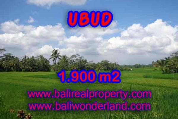 Excellent Property for sale in Bali, land for sale in Ubud Bali  – 1.900 m2 @ $ 165