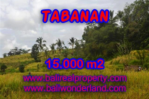 Terrific Property for sale in Bali, LAND FOR SALE IN TABANAN Bali  – 25.500 m2 @ $ 50