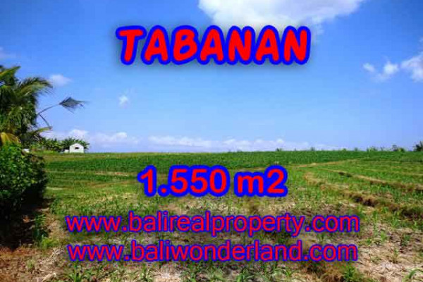 Land for sale in Bali, Interesting view in Tabanan Bali – 1.550 m2 @ $ 50
