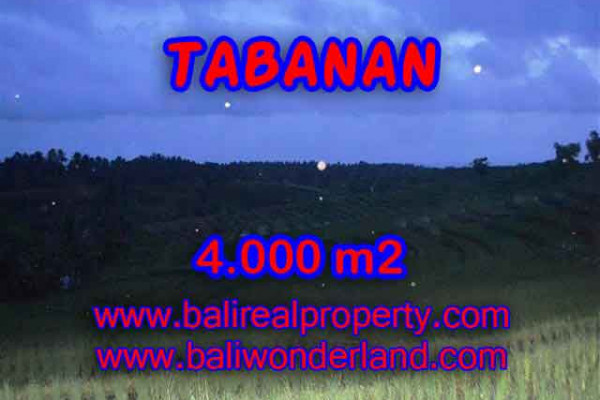 Exotic Property for sale in Bali, Land in Tabanan for sale– 4.000 m2 @ $ 36