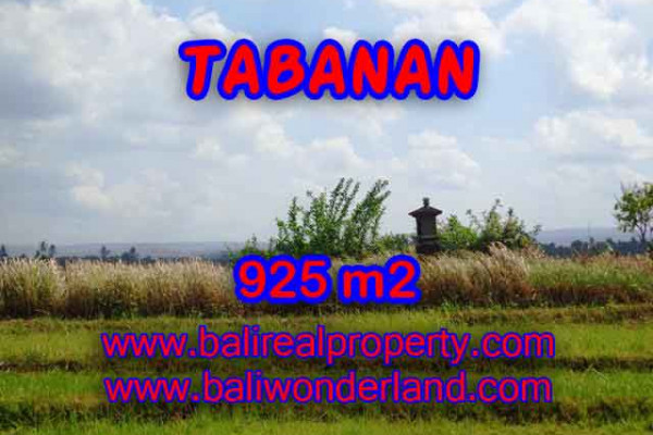 Land for sale in Bali, Magnificent view in Tabanan Bali – 925 m2 @ $ 100