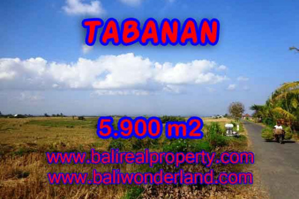 Land for sale in Bali, Spectacular view in Tabanan Bali – 5.900 m2 @ $ 75