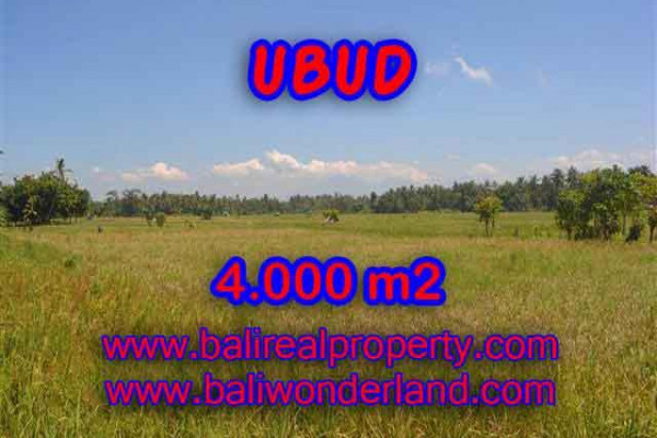 Extraordinary Property in Bali, Land in Ubud for sale – 4.000 m2 @ $ 290