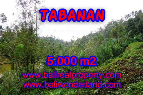 Land for sale in Bali, Outstanding property in Tabanan Bali – 5.000 m2 @ $ 27