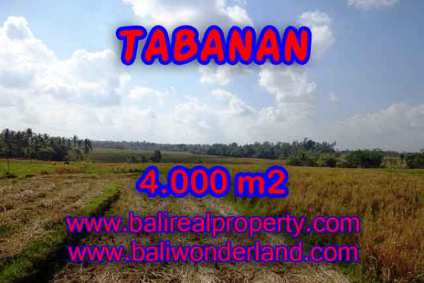 Land in Bali for sale, Great view in Tabanan Bali – 4.000 m2 @ $ 45
