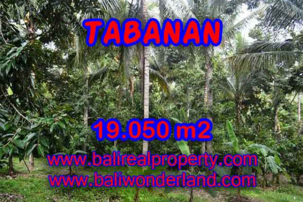 Astounding Property in Bali, Land in Tabanan Bali for sale – 19.050 m2 @ $ 20