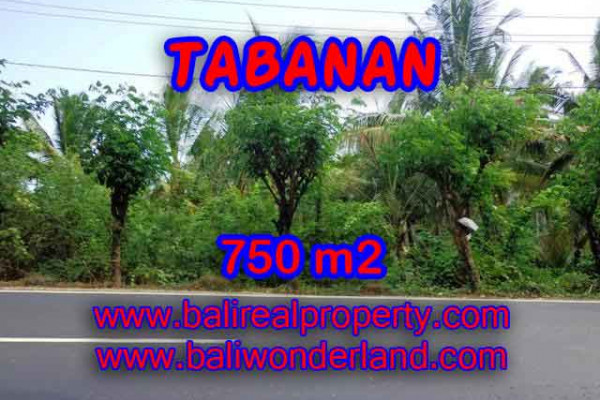 Land for sale in Bali, Exceptional view in Tabanan Bali – 750 m2 @ $ 145