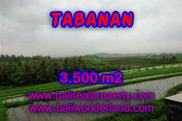 Land for sale in Tabanan Bali, Unbelievable view in Tabanan selemadeg – TJTB141