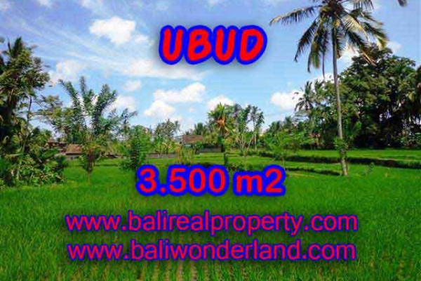 Exotic Property in Bali, Land sale in Ubud Bali – 3.500 m2 @ $ 175