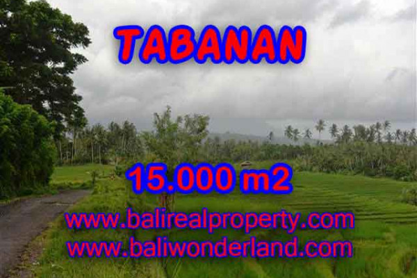 Magnificent Property in Bali, Land for sale in Tabanan Bali – 15.000 m2 @ $ 47