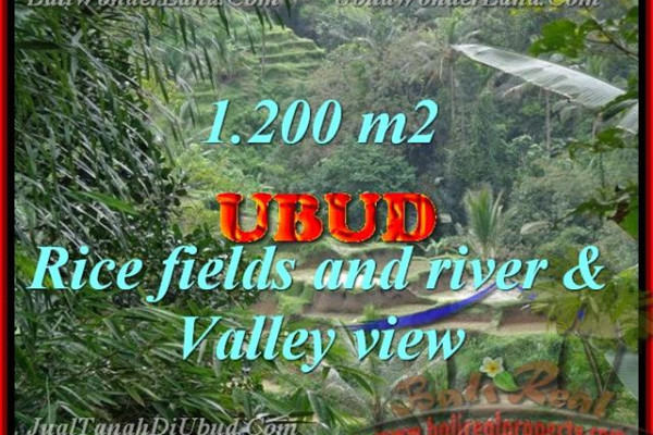 Land for sale in Bali, exotic view in Ubud Tegalalang Bali – TJUB420