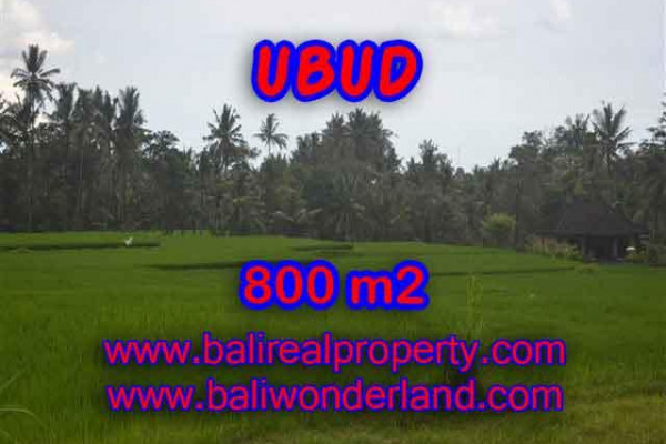Land in Ubud Bali for sale, Exotic view in Ubud Pejeng – TJUB396